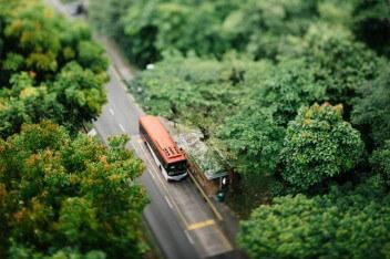 автобус на остановке в лесу