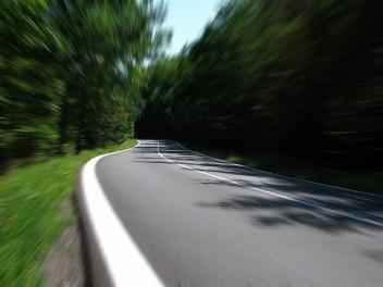 Трасса дорога лес скорость