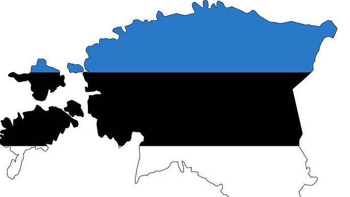 Медична страховка для візи в Естонію