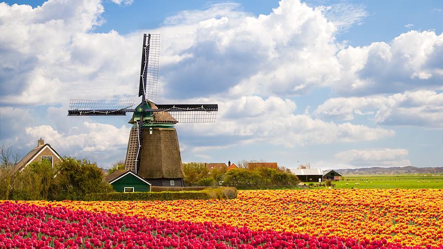 Туристична страховка в Нідерланди